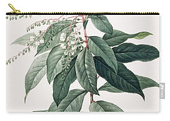 Lily Of The Valley Tree Carry-all Pouch by Pierre Joseph Redoute