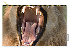 Lion Carry-all Pouch by Johan Swanepoel
