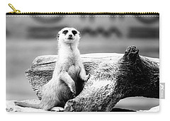 Little Meerkat Carry-all Pouch by Pati Photography