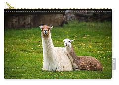 Llama Mamma Carry-all Pouch by Paul Freidlund