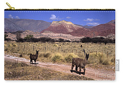 Llamas And Cerro Yacoraite Argentina Carry-all Pouch by James Brunker