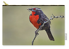 Long-tailed Meadowlark Carry-all Pouch by Tony Beck