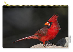 Male Cardinal Carry-all Pouch by Gary Langley