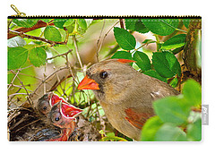 Mama Bird Carry-all Pouch by Frozen in Time Fine Art Photography