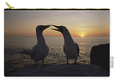 Masked Booby Couple Courting Galapagos Carry-all Pouch by Konrad Wothe