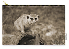 Meerkat On A Log Carry-all Pouch by Douglas Barnard