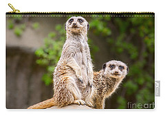 Meerkat Pair Carry-all Pouch by Jamie Pham