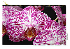 Moth Orchid Carry-all Pouch by James Brunker