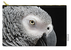 My Name Is Bogie Carry-all Pouch by Betty LaRue