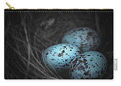 Nest Of 3  Carry-all Pouch by Trish Mistric