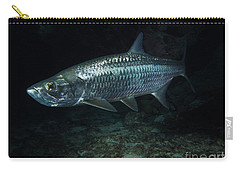 Night Tarpon Carry-all Pouch by Carey Chen