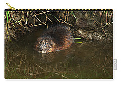 North American Beaver Carry-all Pouch by Sharon Talson
