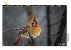 Oh No Not Again Carry-all Pouch by Lois Bryan