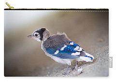 one day...I will fly Carry-all Pouch by Shane Holsclaw
