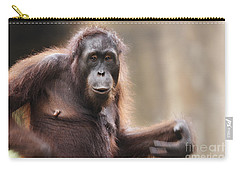 Orangutan Carry-all Pouch by Richard Garvey-Williams