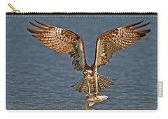 Osprey Morning Catch Carry-all Pouch by Susan Candelario