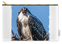Osprey Surprise Party Card Carry-all Pouch by Edward Fielding