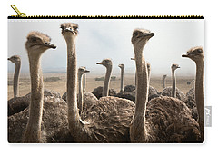 Ostrich Heads Carry-all Pouch by Johan Swanepoel