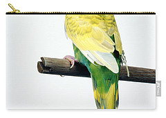 Parakeet Carry-all Pouch by Aaron Haupt