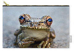 Pondering Frog Carry-all Pouch by Laura Fasulo