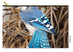 Portrait Of A Blue Jay Square Carry-all Pouch by Bill Wakeley