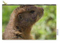Prairie Dog Portrait Carry-all Pouch by Dan Sproul