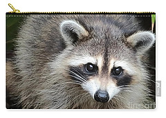 Raccoon Eyes Carry-all Pouch by Carol Groenen