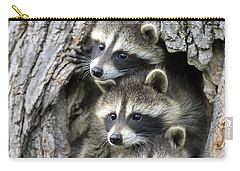 Raccoon Trio At Den Minnesota Carry-all Pouch by Jurgen & Christine Sohns