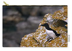 Razorbill Bird Carry-all Pouch by Dreamland Media