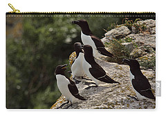 Razorbill Cliff Carry-all Pouch by Dreamland Media