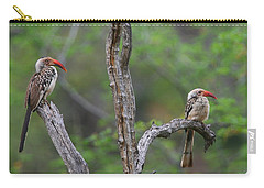 Red-billed Hornbills Carry-all Pouch by Bruce J Robinson