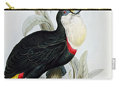 Red-billed Toucan Carry-all Pouch by Edward Lear