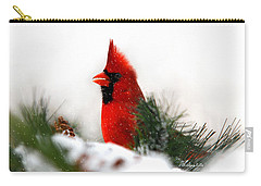 Red Cardinal Carry-all Pouch by Christina Rollo