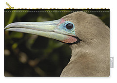 Red-footed Booby Close Up Galapagos Carry-all Pouch by Pete Oxford