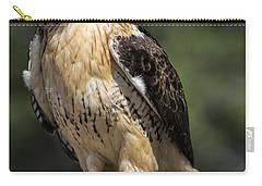 Red Tailed Hawk Carry-all Pouch by Dale Kincaid