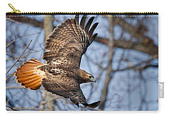 Redtail Hawk Carry-all Pouch by Bill Wakeley