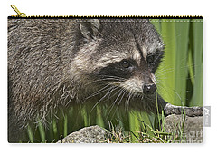 Rocky Raccoon Carry-all Pouch by Sharon Talson