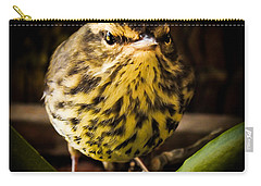 Round Warbler Carry-all Pouch by Karen Wiles