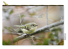 Ruby-crowned Kinglet Carry-all Pouch by Christina Rollo