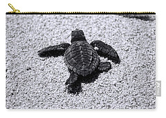 Sea Turtle Carry-all Pouch by Sebastian Musial