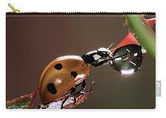 Seven-spotted Ladybird Coccinella Carry-all Pouch by Jef Meul