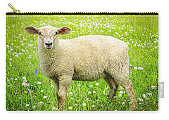 Sheep In Summer Meadow Carry-all Pouch by Elena Elisseeva