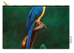 Singapore Macaw At Jurong Bird Park  Carry-all Pouch by Anonymous