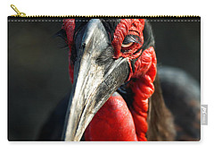 Southern Ground Hornbill Portrait Front View Carry-all Pouch by Johan Swanepoel