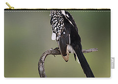 Southern Yellowbilled Hornbill Carry-all Pouch by Johan Swanepoel