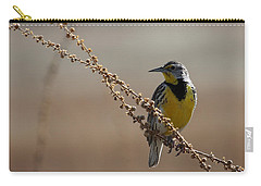 Spring Meadowlark Carry-all Pouch by Marty Fancy
