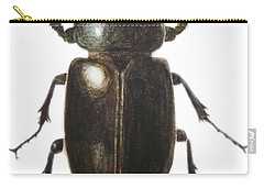Stag Beetle Carry-all Pouch by Ele Grafton