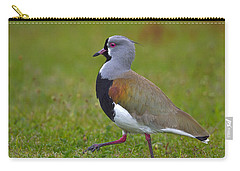 Strutting Lapwing Carry-all Pouch by Tony Beck