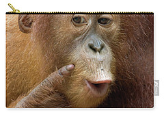 Sumatran Orangutan Baby Calling Carry-all Pouch by Suzi Eszterhas