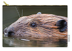 The Beaver Square Carry-all Pouch by Bill Wakeley